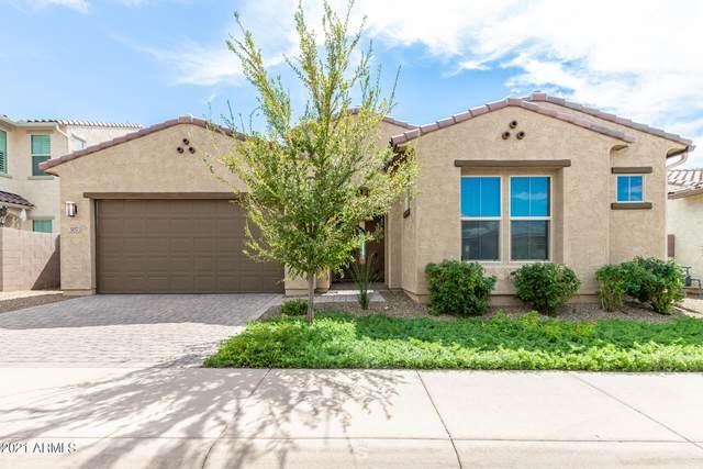 307 E Balao Drive, Phoenix, AZ 85085 (MLS #6303126) :: Elite Home Advisors