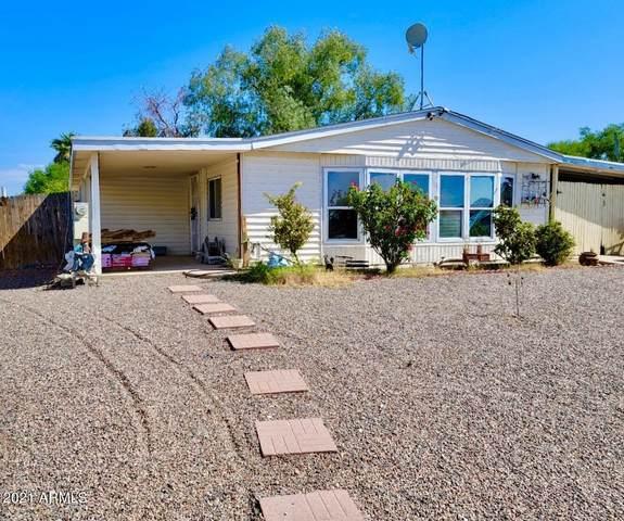 1131 S 97TH Way S, Mesa, AZ 85208 (MLS #6303169) :: Yost Realty Group at RE/MAX Casa Grande
