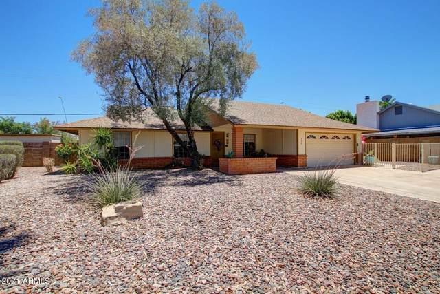 713 N Orlando Circle, Mesa, AZ 85205 (MLS #6303175) :: The Laughton Team