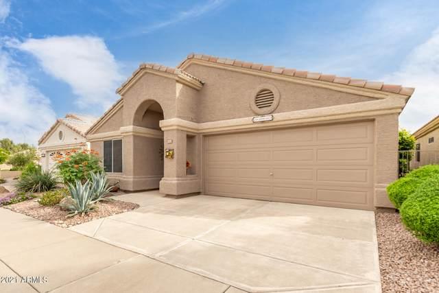 13937 W Santee Way, Surprise, AZ 85374 (MLS #6303176) :: Elite Home Advisors