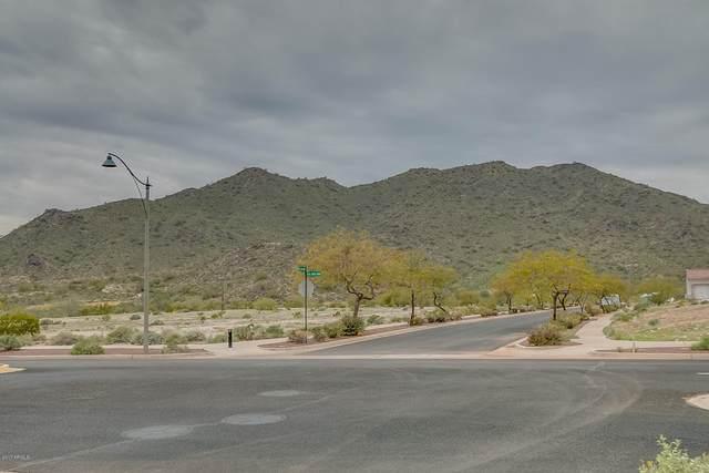 3890 N Gila Plain Trail, Buckeye, AZ 85396 (MLS #6303295) :: Service First Realty