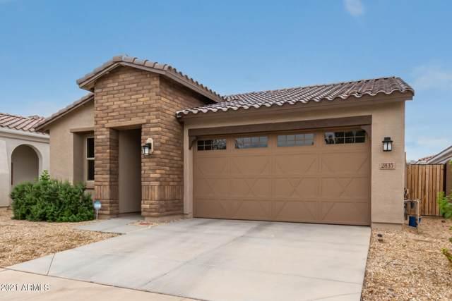 2835 E Sunland Avenue, Phoenix, AZ 85040 (MLS #6303301) :: Elite Home Advisors