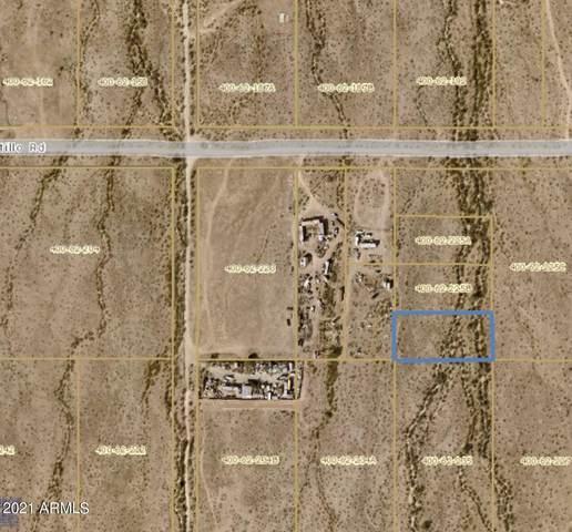 000- E Ocotillo Road, Buckeye, AZ 85326 (MLS #6303317) :: The Newman Team