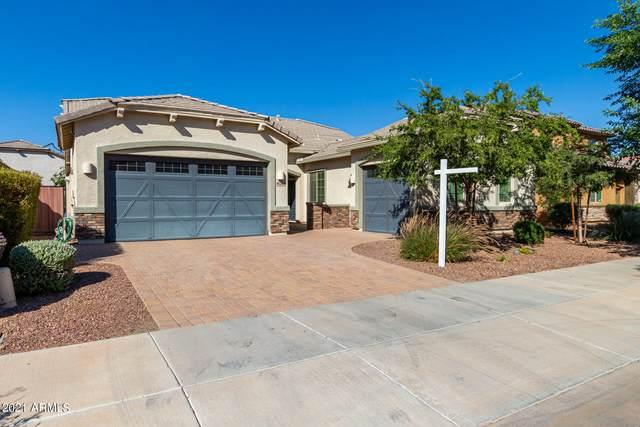 19260 E Reins Road, Queen Creek, AZ 85142 (MLS #6303333) :: My Home Group