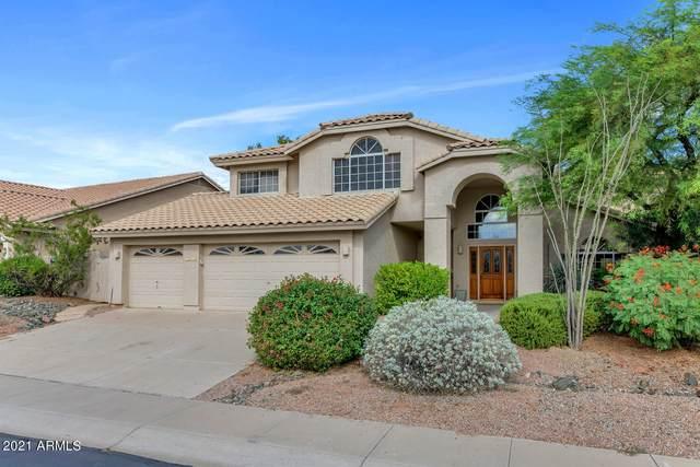 1606 E Nighthawk Way, Phoenix, AZ 85048 (MLS #6303336) :: Elite Home Advisors