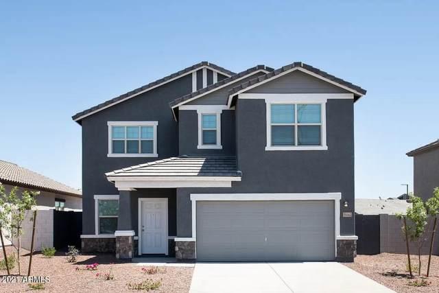 35521 W Santa Clara Avenue, Maricopa, AZ 85138 (MLS #6303408) :: Elite Home Advisors