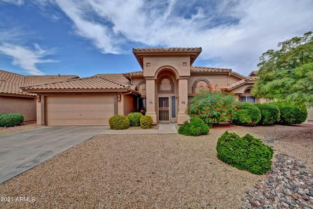 9020 W Kerry Lane, Peoria, AZ 85382 (MLS #6303426) :: Elite Home Advisors
