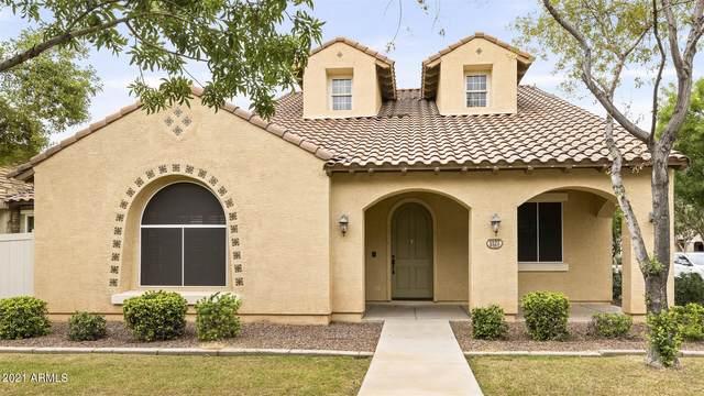 1127 S Storment Lane, Gilbert, AZ 85296 (MLS #6303468) :: Yost Realty Group at RE/MAX Casa Grande