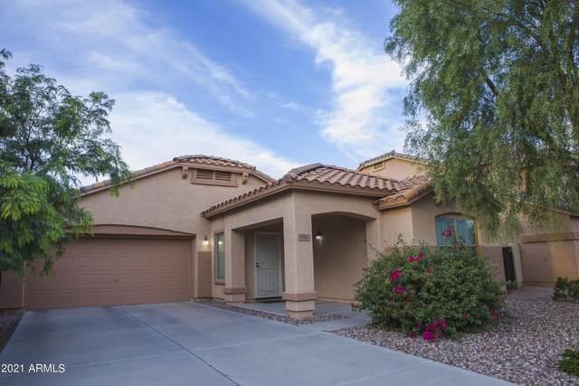 590 E Press Road, San Tan Valley, AZ 85140 (MLS #6303485) :: Yost Realty Group at RE/MAX Casa Grande