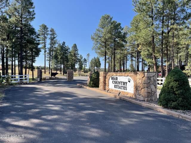 2238 Kodiak Circle, Overgaard, AZ 85933 (MLS #6303541) :: The Copa Team   The Maricopa Real Estate Company