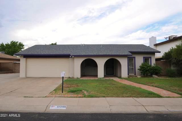 11046 N 53RD Avenue, Glendale, AZ 85304 (MLS #6303544) :: Elite Home Advisors