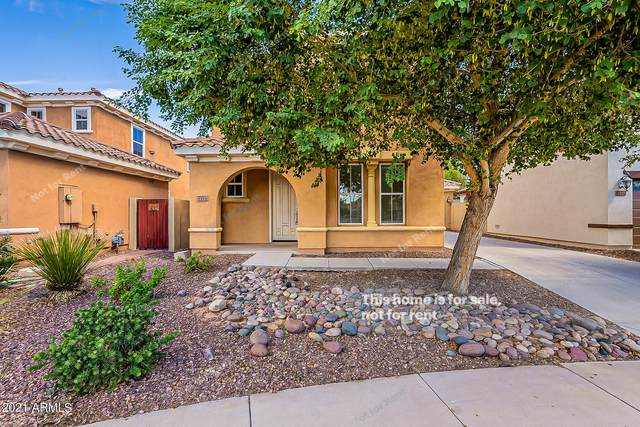1171 N Mason Drive, Chandler, AZ 85225 (MLS #6303552) :: Elite Home Advisors