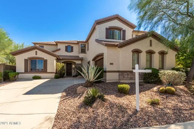 38907 N Red Tail Court, Phoenix, AZ 85086 (MLS #6303554) :: The Luna Team