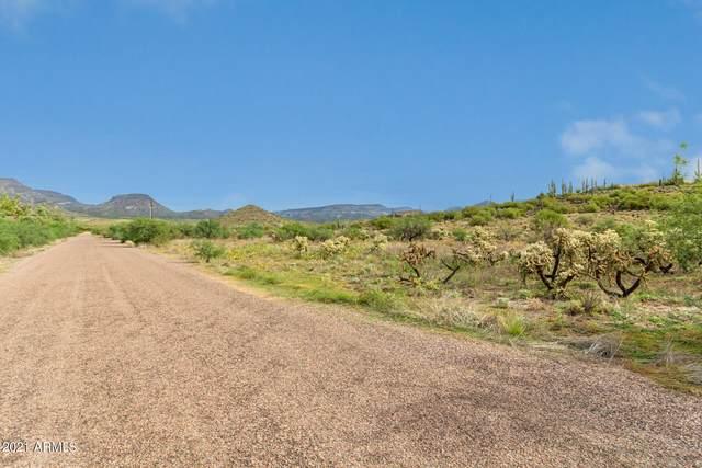 419XX N Old Stage Road, Cave Creek, AZ 85331 (MLS #6303580) :: RE/MAX Desert Showcase