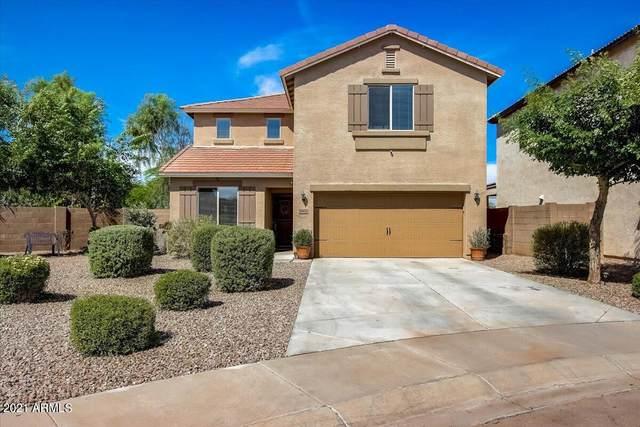 29932 N Cholla Drive, Florence, AZ 85132 (MLS #6303616) :: Elite Home Advisors