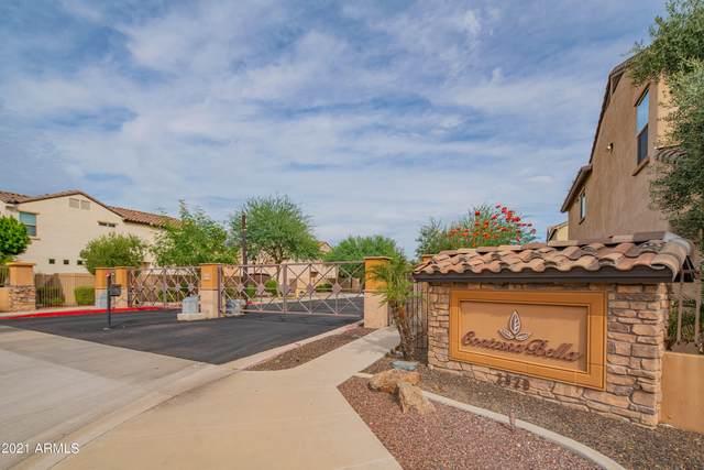 2015 E Heartwood Lane, Phoenix, AZ 85022 (MLS #6303654) :: Elite Home Advisors