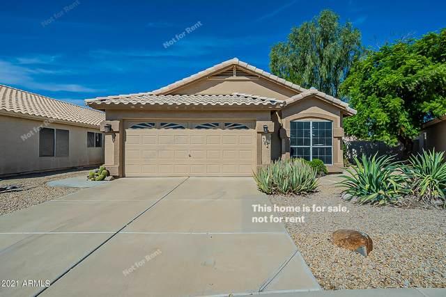 782 E Baylor Lane, Chandler, AZ 85225 (MLS #6303677) :: Elite Home Advisors