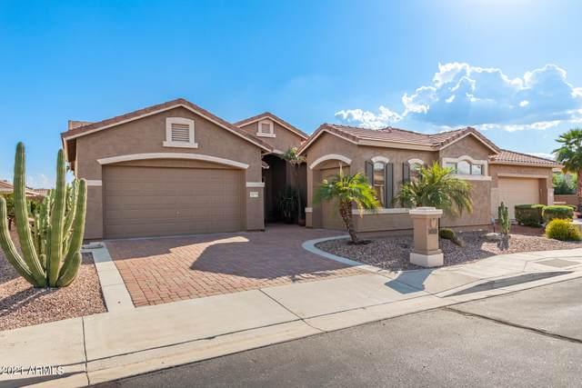 18275 W Stinson Drive, Surprise, AZ 85374 (MLS #6303683) :: Elite Home Advisors