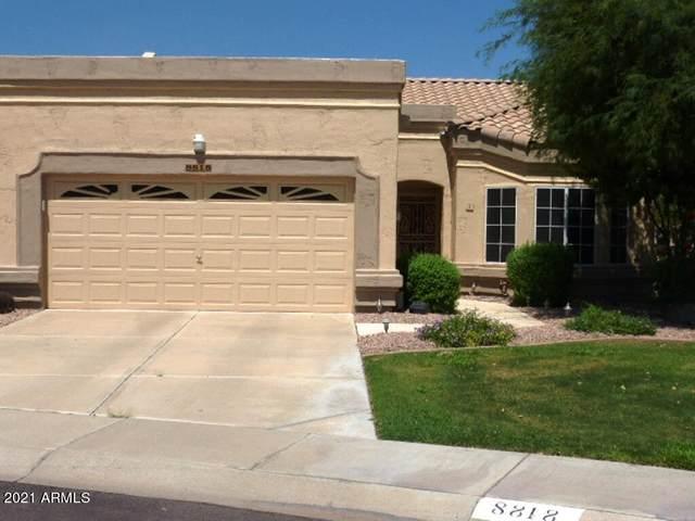 8818 W Piute Avenue, Peoria, AZ 85382 (MLS #6303706) :: Yost Realty Group at RE/MAX Casa Grande