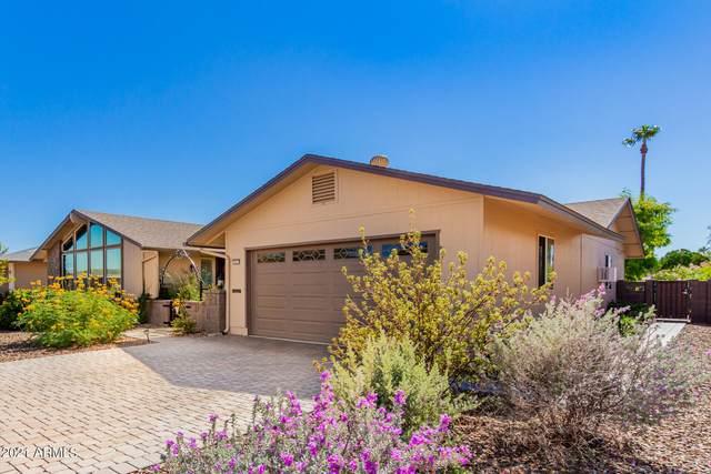 10619 W Desert Rock Drive, Sun City, AZ 85351 (MLS #6303709) :: Klaus Team Real Estate Solutions