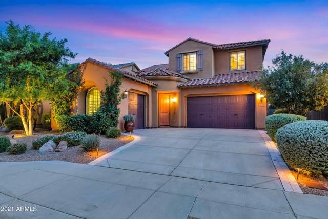 3789 E Ringtail Way, Phoenix, AZ 85050 (MLS #6303712) :: RE/MAX Desert Showcase