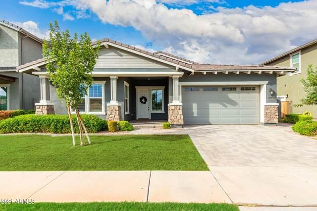 2928 E Spring Wheat Lane, Gilbert, AZ 85296 (MLS #6303728) :: Conway Real Estate