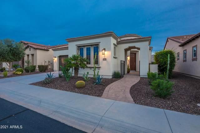 1751 E Maygrass Lane, Queen Creek, AZ 85140 (MLS #6303730) :: Elite Home Advisors