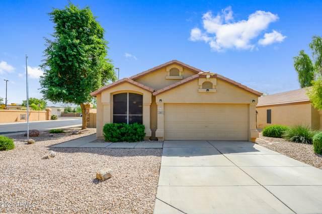2287 E Arabian Drive, Gilbert, AZ 85296 (MLS #6303732) :: Yost Realty Group at RE/MAX Casa Grande