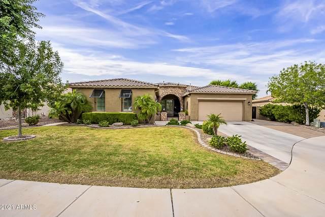 6606 S Fawn Court, Gilbert, AZ 85298 (MLS #6303748) :: Klaus Team Real Estate Solutions