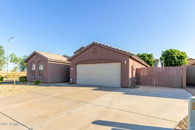 12605 W Merrell Street, Avondale, AZ 85392 (MLS #6303779) :: Elite Home Advisors
