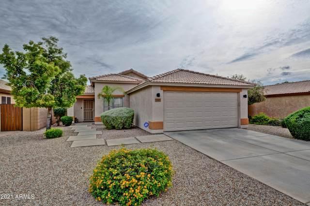 9349 W Potter Drive, Peoria, AZ 85382 (MLS #6303780) :: Elite Home Advisors