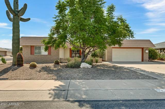 9909 W Oak Ridge Drive, Sun City, AZ 85351 (MLS #6303802) :: Elite Home Advisors