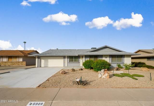 9908 W Oakstone Drive, Sun City, AZ 85351 (MLS #6303807) :: Elite Home Advisors