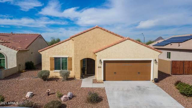 2310 N Palo Verde Drive, Florence, AZ 85132 (MLS #6303808) :: Elite Home Advisors