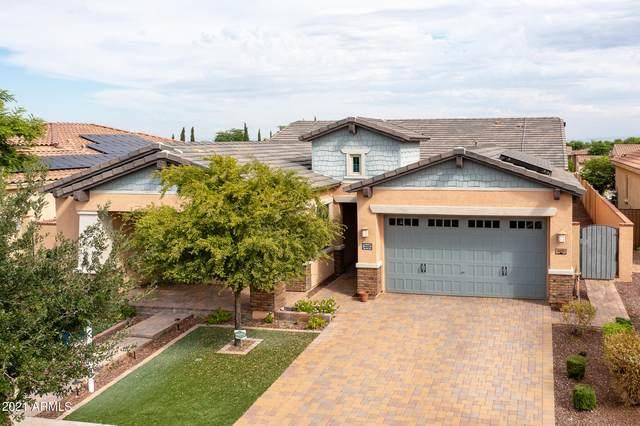 4451 N Arbor Way, Buckeye, AZ 85396 (MLS #6303821) :: Elite Home Advisors
