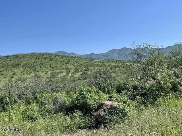 TBD Tejano Springs Rd, Rio Rico, AZ 85648 (MLS #6303850) :: Yost Realty Group at RE/MAX Casa Grande