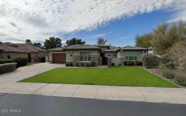 4872 N Barranco Drive, Litchfield Park, AZ 85340 (MLS #6303856) :: Elite Home Advisors
