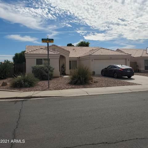 2367 E Cathy Court, Gilbert, AZ 85296 (MLS #6303881) :: Elite Home Advisors