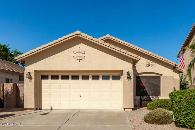 14560 W Evans Drive, Surprise, AZ 85379 (MLS #6303896) :: Elite Home Advisors