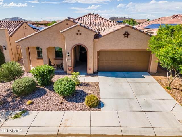 4168 N Potomac Drive, Florence, AZ 85132 (MLS #6303902) :: Klaus Team Real Estate Solutions