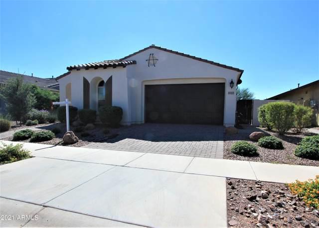 10253 E Tillman Avenue, Mesa, AZ 85212 (MLS #6303904) :: Elite Home Advisors