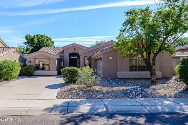 1711 W Saragosa Street, Chandler, AZ 85224 (MLS #6303906) :: Elite Home Advisors