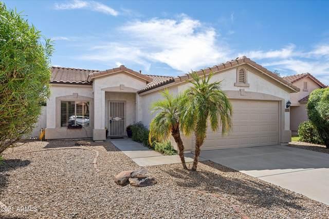 1711 W Hiddenview Drive, Phoenix, AZ 85045 (MLS #6303965) :: The Daniel Montez Real Estate Group
