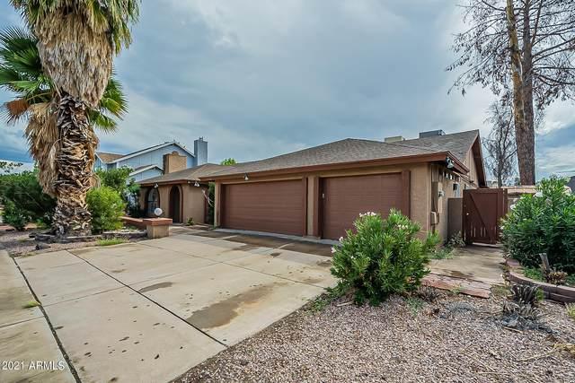 6407 W Mescal Street, Glendale, AZ 85304 (MLS #6303975) :: Elite Home Advisors