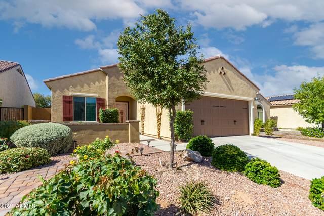 2426 N Petersburg Drive, Florence, AZ 85132 (MLS #6303999) :: Keller Williams Realty Phoenix