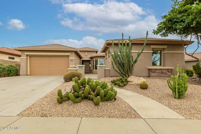 2217 W Clearview Trail, Anthem, AZ 85086 (MLS #6304044) :: Elite Home Advisors