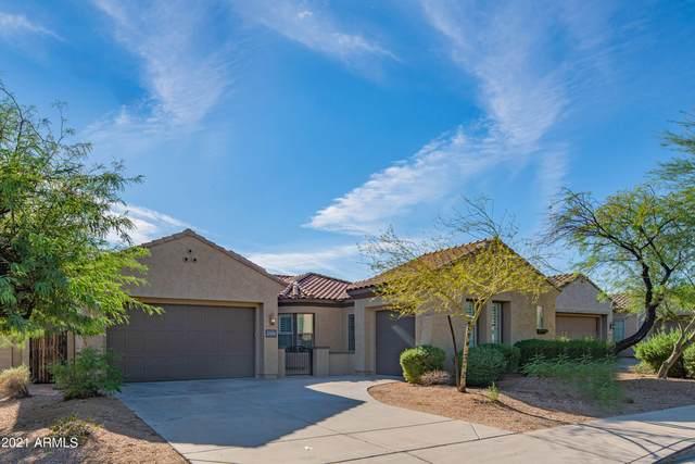 27434 N Higuera Drive, Peoria, AZ 85383 (MLS #6304063) :: Fred Delgado Real Estate Group