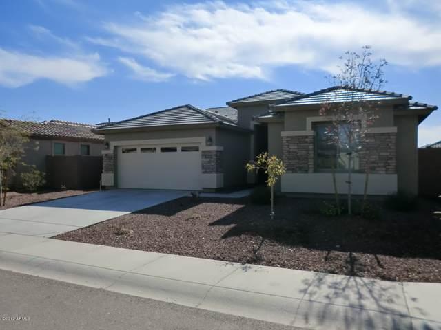 11317 W Holly Street, Avondale, AZ 85392 (MLS #6304064) :: The Daniel Montez Real Estate Group