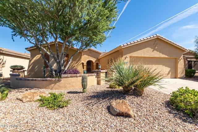 20509 N Enchantment Pass, Maricopa, AZ 85138 (MLS #6304065) :: Elite Home Advisors