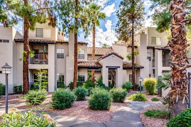 14145 N 92ND Street #1029, Scottsdale, AZ 85260 (MLS #6304095) :: Elite Home Advisors